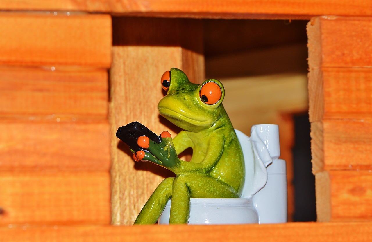 Frog in His Small Bathroom
